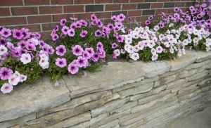 Superior Garden Design Near West Bloomfield MI | Landscape Gardens - Austin-Planter