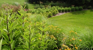 Expert Landscape Architect Around Oakland County MI | Landscape Gardens - open_space_bushes-1