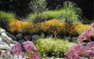 Quality Garden Design Around Clarkston MI | Landscape Gardens - pond_flowers